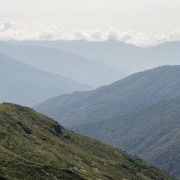 Абхазия :: Лидия Федорова