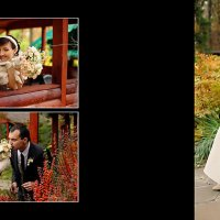 Wedding :: Александр Солодовник