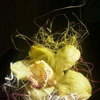 Орхидея :: Владимир Собянин