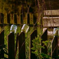 Баночки которые в закат... :: Александр | Матвей БЕЛЫЙ