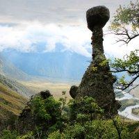 Каменные грибы на реке Чулышман. Горный Алтай. :: Наталья Карышева