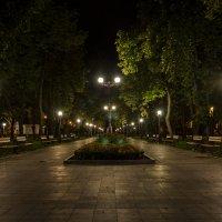 Парк :: Богдан Петренко