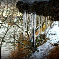 Суровая зима.. :: Алина Аверина