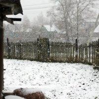 snow :: Екатерина Захарова