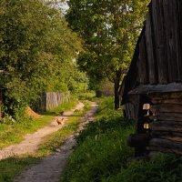 Хорошо в деревне! :: Анатолий Тимофеев