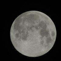 Луна 20.08.2013 (съёмка с руки). :: Геннадий Александрович