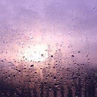 Солнышко за окном :: Илья Абакумов