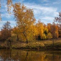 Осенью у пруда. :: Юрий