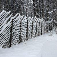 Тест резкости CS6 :: Евгений Никифоров