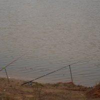 Ноябрьская рыбалка :: Мария Т