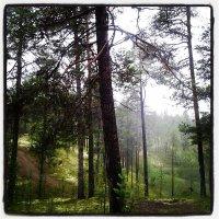 До Финляндии 120 км :: Наталья Иванова