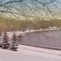 Зима на Свислочи. :: Nonna