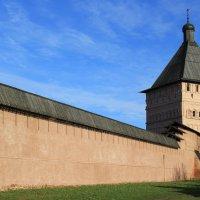 Стены Спасо-Евфимиева монастыря, Суздаль :: Александр Смирнов