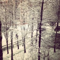А из нашего окна..... :: Екатерина Василькова