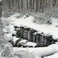 А за городом зима.... :: MaOla ***