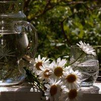 Ромашки для Наташки...)) :: ФотоЛюбка *