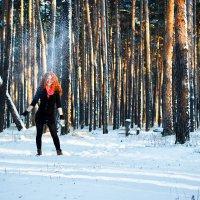 Зима :: Kate Bond