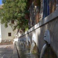 Львиный фонтан... :: Анатолий