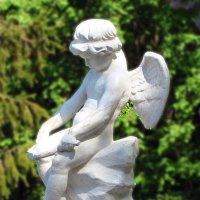 ангел :: юрий иванов