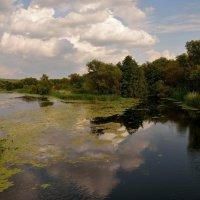 слияние темной и светлой реки :: Андрей ЕВСЕЕВ