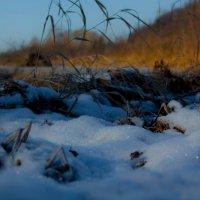 И под утро снегом поле забелело... :: Мила Солнечная