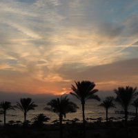 Зимний рассвет пустыни :: Jana Sheremet