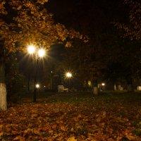 Осенняя ночь :: Николай Колонтай