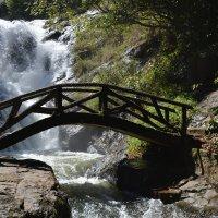 Мост над бурным потоком. :: Ирина Михайловна