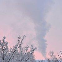 Зима пришла... по-настоящему :: Михаил Махров