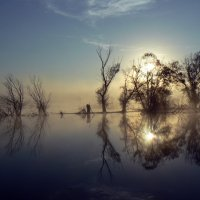 рассвет на озере :: Лариса Б
