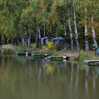 Осень в тропарево :: Николай Орехов