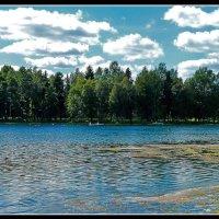 Лес,озеро,тишина. :: Александр Лейкум