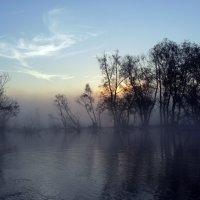 утро на озере :: Лариса Б
