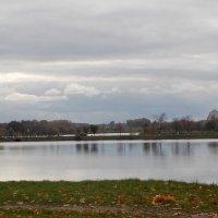 Прогулка по Несвижу, Замковый пруд :: Irina