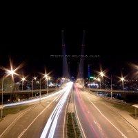 """Владивосток. Мост через бухту """"Золотой Рог"""" :: Оля К"""