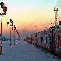 зима приехала в Архангельск :: Альберт Сархатов