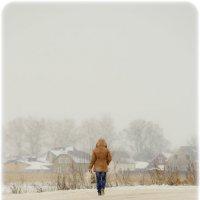На зимний дорогах... :: Olga Starshova