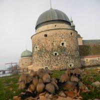 И у замков растут грибы :: ЕЛЕНКА Литвиновская