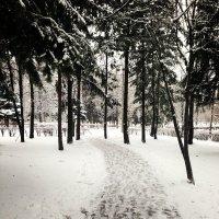 Холодная :: Эльза Королёва