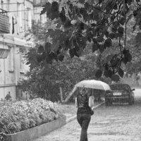 Летний дождь... :: Svetlana Sneg