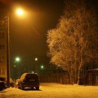 Ночь декабрьская, туманная :: Елена Перевозникова