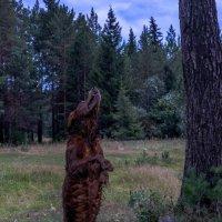 Пикник на природе :: Дмитрий Марков