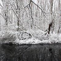 Узоры зимы. :: Николай Кондаков