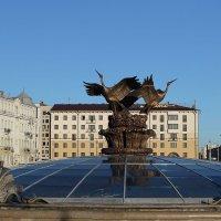 Три бусла на площади Независимости. Автор мне неизвестен. :: Nonna