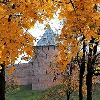 Осенняя прогулка :: Евгений Никифоров