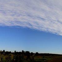 Панорама неба :: Сливка Вікторія