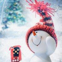 Снеговик :: Ирина Руденко