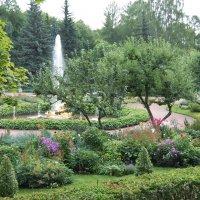 Цветы в Петергофе. :: Марина Николаева