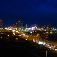 Ночной Киев :: Вера Бережная