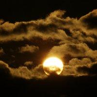 Солнце :: Олег Горобец